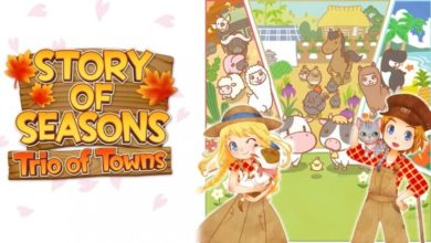 Photo of Story of Seasons Trio of Towns DLC New Details Released