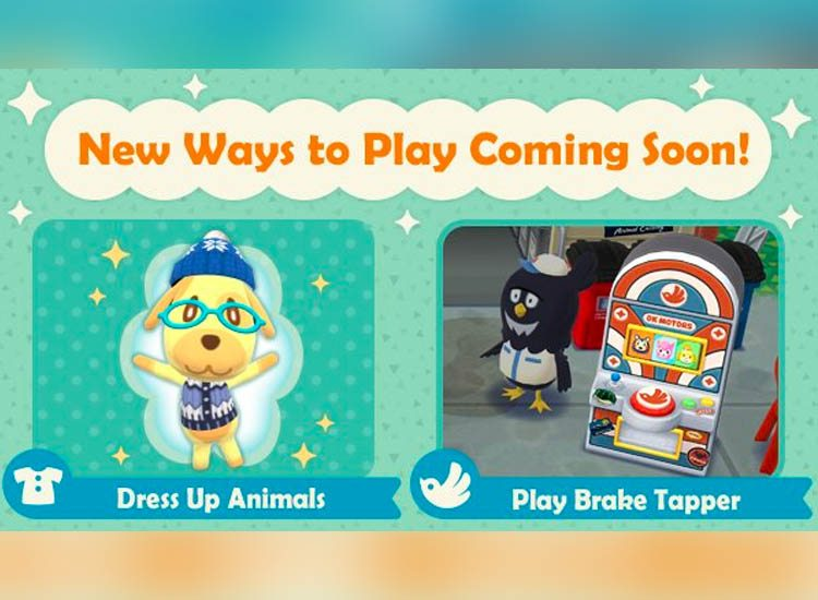 Pocket Camp Update