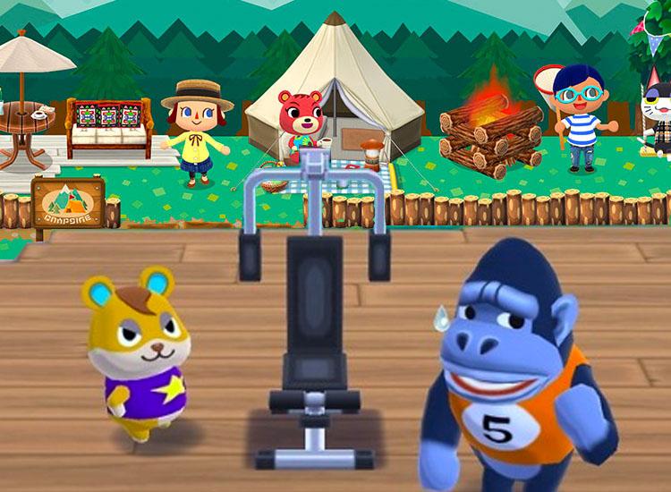 Animal Crossing Pocket Camp New Memory Added