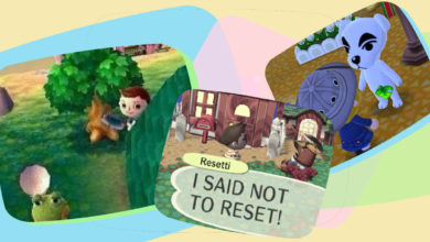 Photo of Fun Facts You Might Not Know About Animal Crossing
