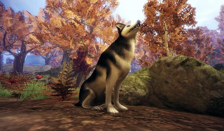 Fable 4 Rumored To Be Completely Open World