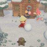 Animal Crossing New Horizons Multiplayer