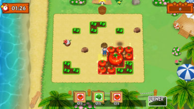 Photo of Harvest Moon Mad Dash First Details Revealed