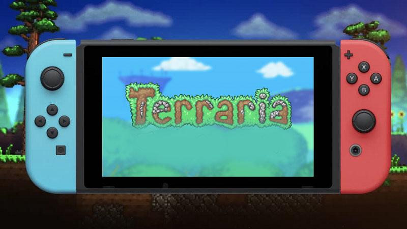 Terreria Nintendo Switch