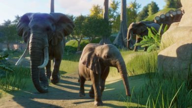 Photo of Planet Zoo Devs Talk Zookeepers and Staff Paths
