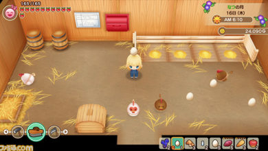 Photo of Marvelous Tells Fans to Expect More Harvest Moon Remakes