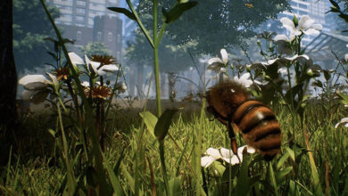 Photo of Bee Simulator Release Imminent For Switch