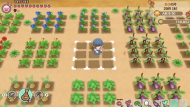 Photo of Story of Seasons Reunion Of Mineral Town First Gameplay Footage Revealed!