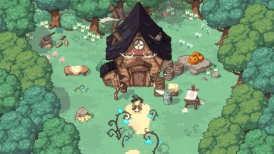 Photo of Little Witch In The Woods: Developers Share Details