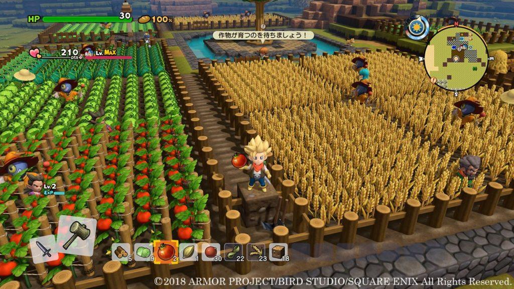 Dragon Quest Builders 2 farm fields crops
