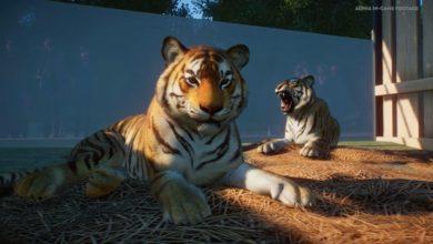 Photo of Planet Zoo Offers Pre-Order Bonus
