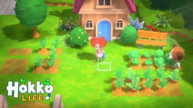 Photo of Hokko Life: What We Know About This Adorable Life Sim