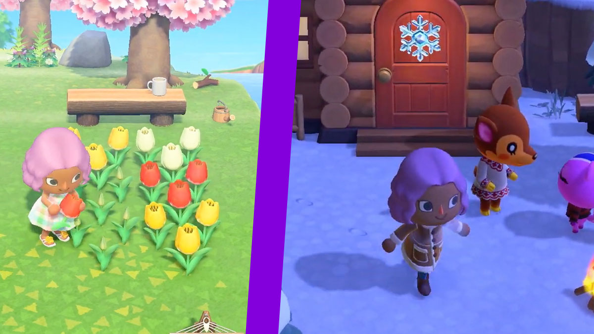 Animal Crossing New Horzions Features