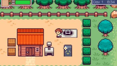 Photo of Picontier Is An Adorable Life Sim Coming To Switch