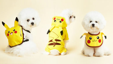 Photo of Pokemon Pet Clothing Collection For Pups And Kitties Is Beyond Adorable