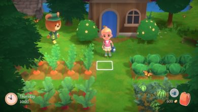 Photo of Hokko Life An Animal Crossing Inspired Village Simulator Gets Early Access Release Date