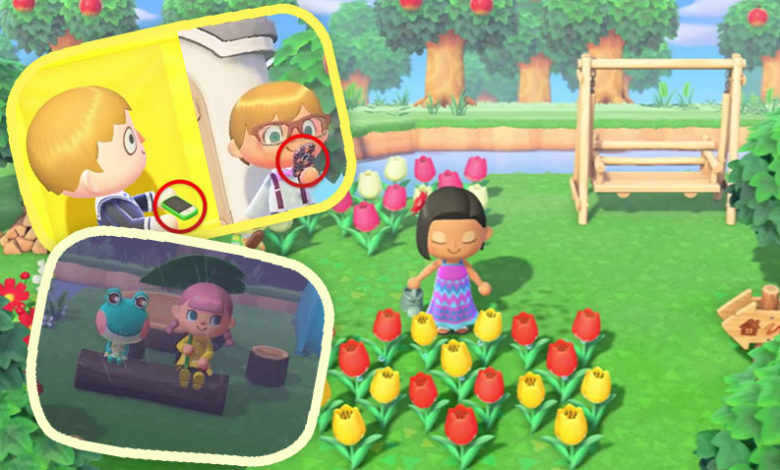 Great Examples Of Attention To Detail In Animal Crossing New