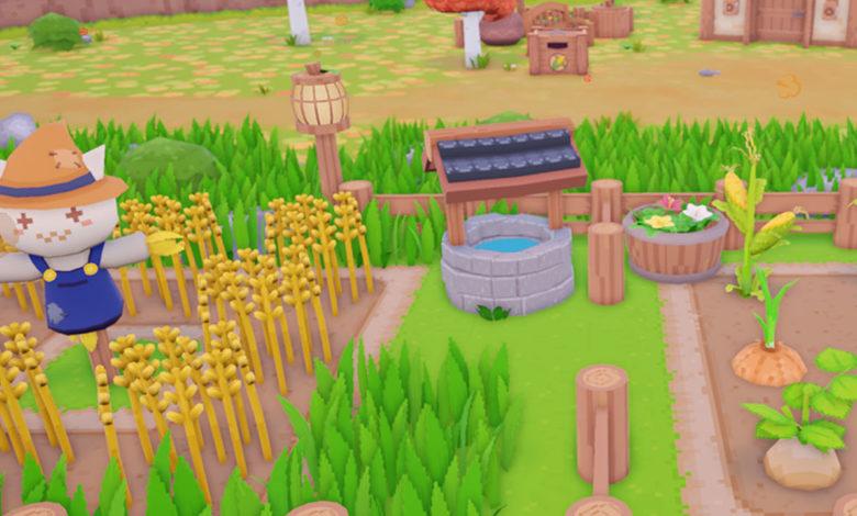 Snacko Farming