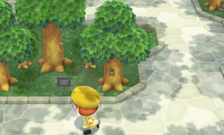 animal crossing new horzizons museum