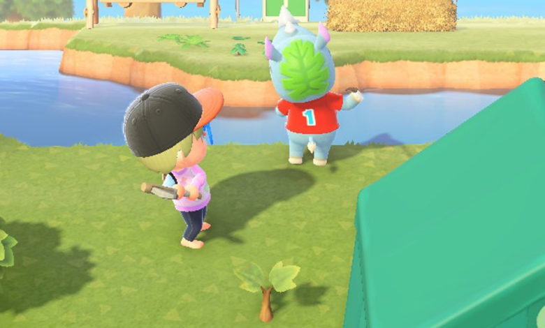 Animal Crossing new horizons get rid of villagers
