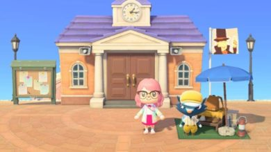 Photo of How To Meet Kicks In Animal Crossing: New Horizons