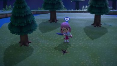 Photo of How To Get Pitfall Seeds In Animal Crossing: New Horizons