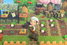 Photo of Animal Crossing New Horizons Vegetable Farming, Cooking And Sewing Coming Soon