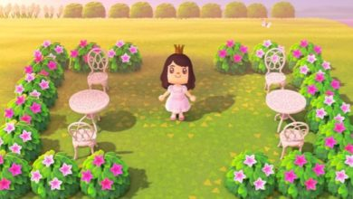 Photo of Nature Day & Leif In Animal Crossing: New Horizons