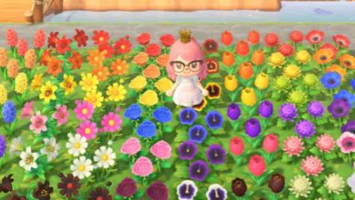 Photo of How To Grow Hybrids In Animal Crossing: New Horizons