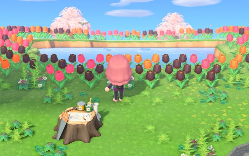 The Different Mystery Tour Islands In Animal Crossing New