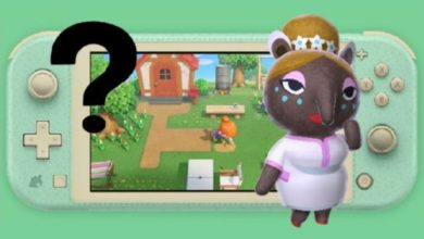 Photo of A Datamine Suggests The Possible Return Of The Dream Suite In Animal Crossing: New Horizons