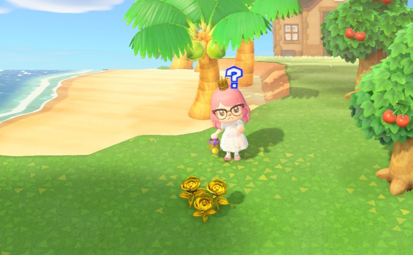 How To Get Gold Roses In Animal Crossing New Horizons Mypotatogames