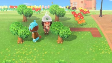 Photo of Some Quirky Little Things That Residents Do In Animal Crossing: New Horizons