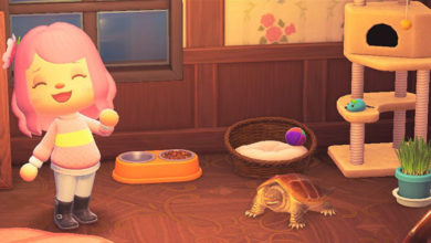 Photo of Adopt A Snapping Turtle In Animal Crossing New Horizons