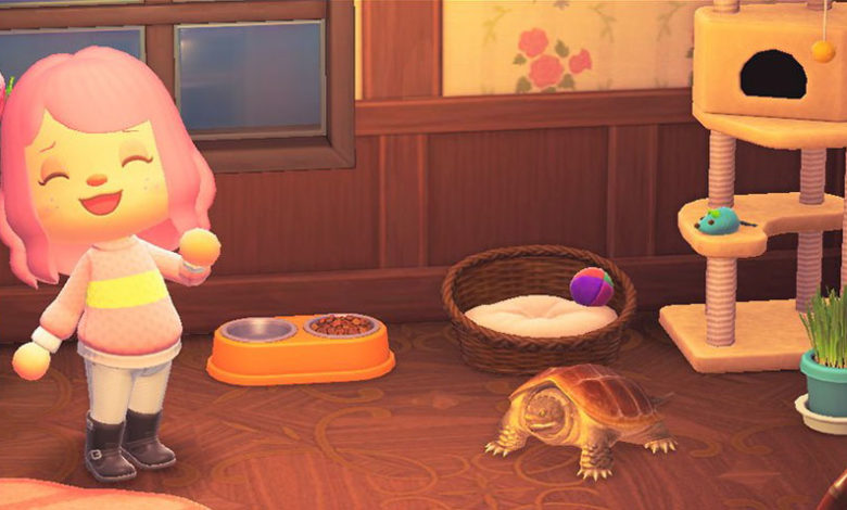 animal crossing new horizons snapping turtle