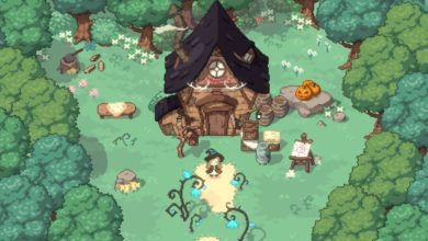 Photo of Little Witch in the Woods – New Details And Images