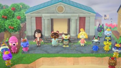 Photo of Unreleased Animal Crossing Villager Discovered In Nintendo Leak