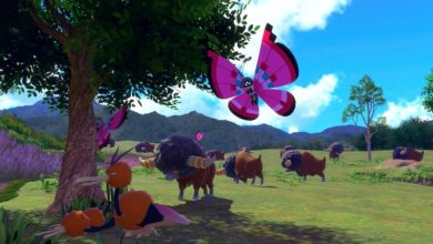 Photo of New Pokemon Snap Is Coming To Switch