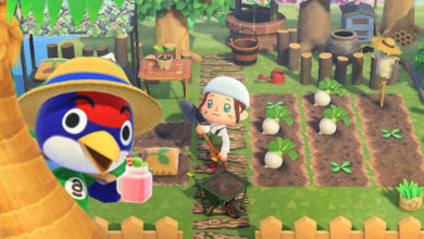 Photo of Rumored And Confirmed Features Heading To Animal Crossing: New Horizons
