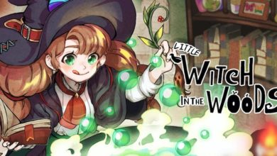 Photo of Little Witch In The Woods – Demo And New Trailer Announced