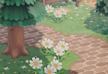 Photo of Create A Paradise With These Animal Crossing New Horizons Custom Path Designs