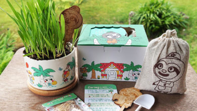 Photo of Grow Plants With This Animal Crossing Garden Kit