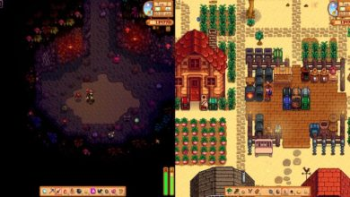 Photo of Stardew Valley Adds Split-screen Co-op