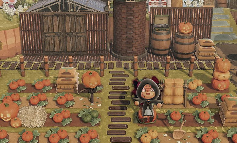 animal crossing new horizons pumpkin patch