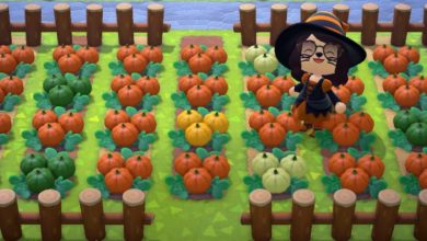 Photo of A Guide To Growing Pumpkins In Animal Crossing: New Horizons