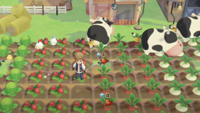 Photo of Story of Seasons: Pioneers of Olive Town Gameplay Video