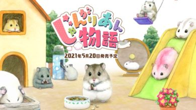 Photo of Djungarian Story – Adorable Hamster Game Announced For Switch