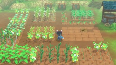 Photo of Kitaria Fables – Adorable Farming RPG Shows Off Terrains