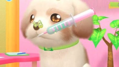 Photo of Pups & Purrs Animal Hospital Coming To Nintendo Switch