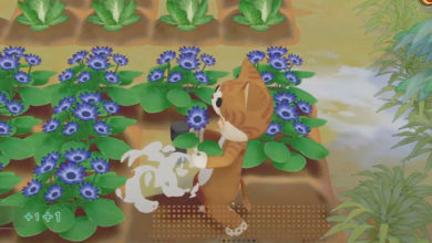 Photo of Story Of Seasons Pioneers Of Olive Town Gets New Animal Costumes And Marriage Candidates